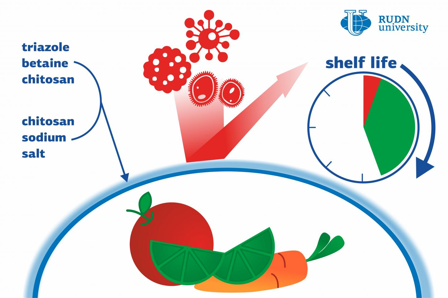 A Team of Chemists from RUDN University Developed Biodegradable Antibacterial Film for Storing Food
