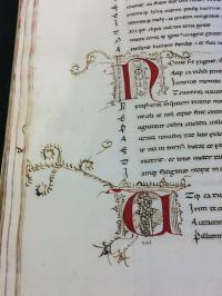 Medieval Manuscripts 3