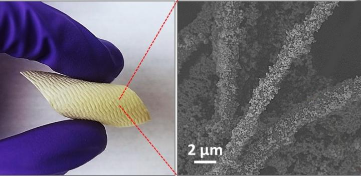 New Fabric Coating Could Thwart Chemical Weapons, Save Lives