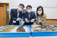 Various types of fisheries captured in Hong Kong waters.