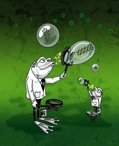 Cartoon Explaining Nuclear Size