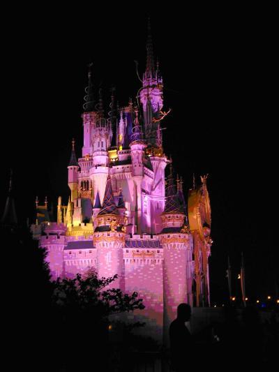 Disney Elevates Heterosexuality to Powerful, Magical Heights