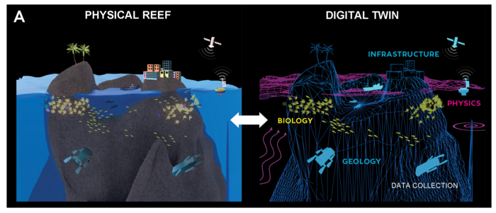 The Coral Reef Digital Twin