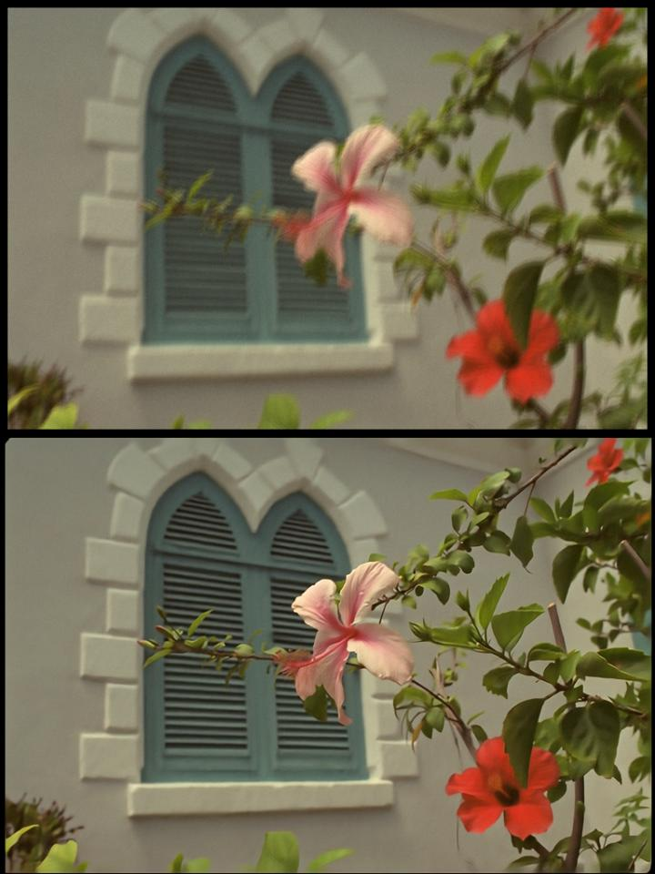 Image Repair with Algorithm: Before/After