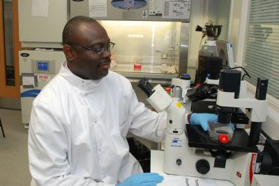 Olumayokun Olajide, University of Huddersfield