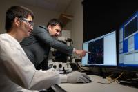 Examining Tumor Cells
