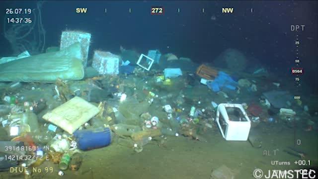JAMSTEC's Deep-sea Debris Database