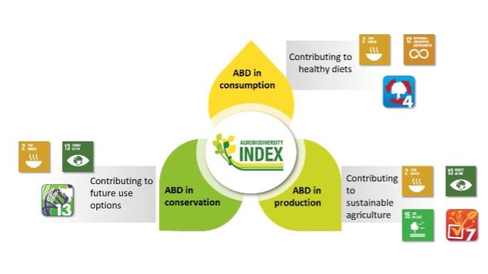 Fig.1: Agrobiodiversity Index