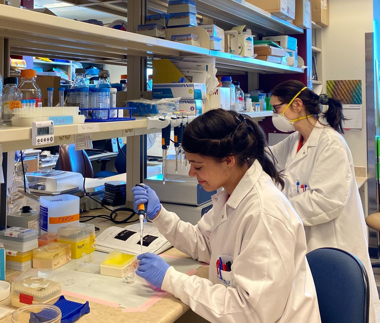 Lab Scientists at Entos Pharmaceuticals