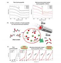 Fig.3. Catalytic performance of activated HAps in oxidative decomposition of VOC