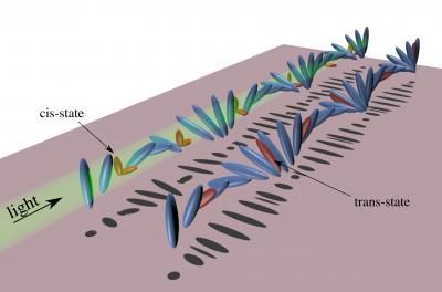 Molecular Structure of the Liquid Crystal Helix and the Embedded Dyes