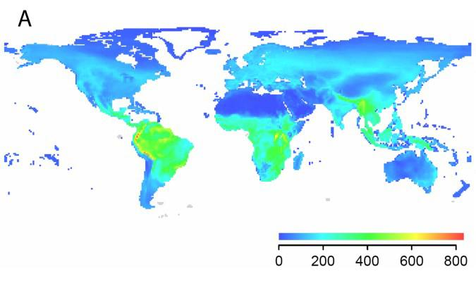 Detailed Global Data on the Distribution of Birds