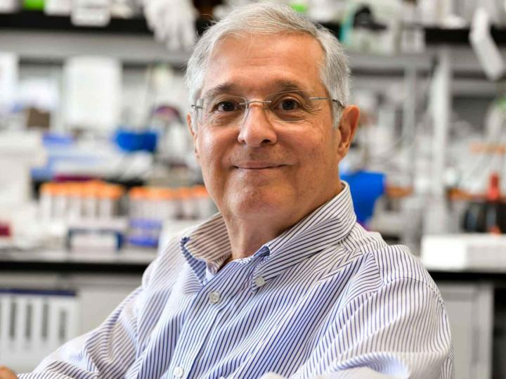 José Luis Millán, Ph.D.