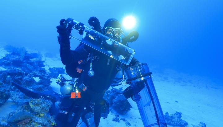 Fish Decompression Chamber