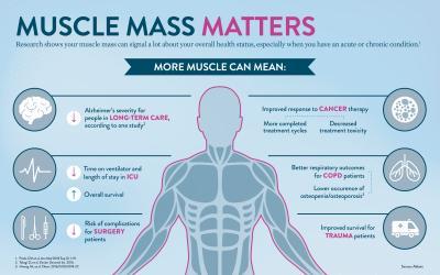 Muscle Mass Matters Infographic