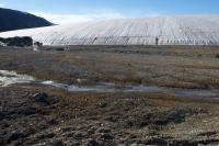 Walker Glacier