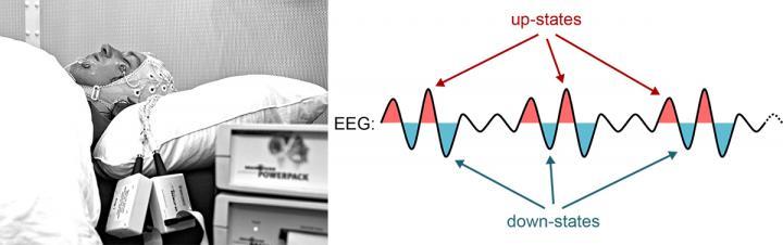 Deep Sleep Brain Waves