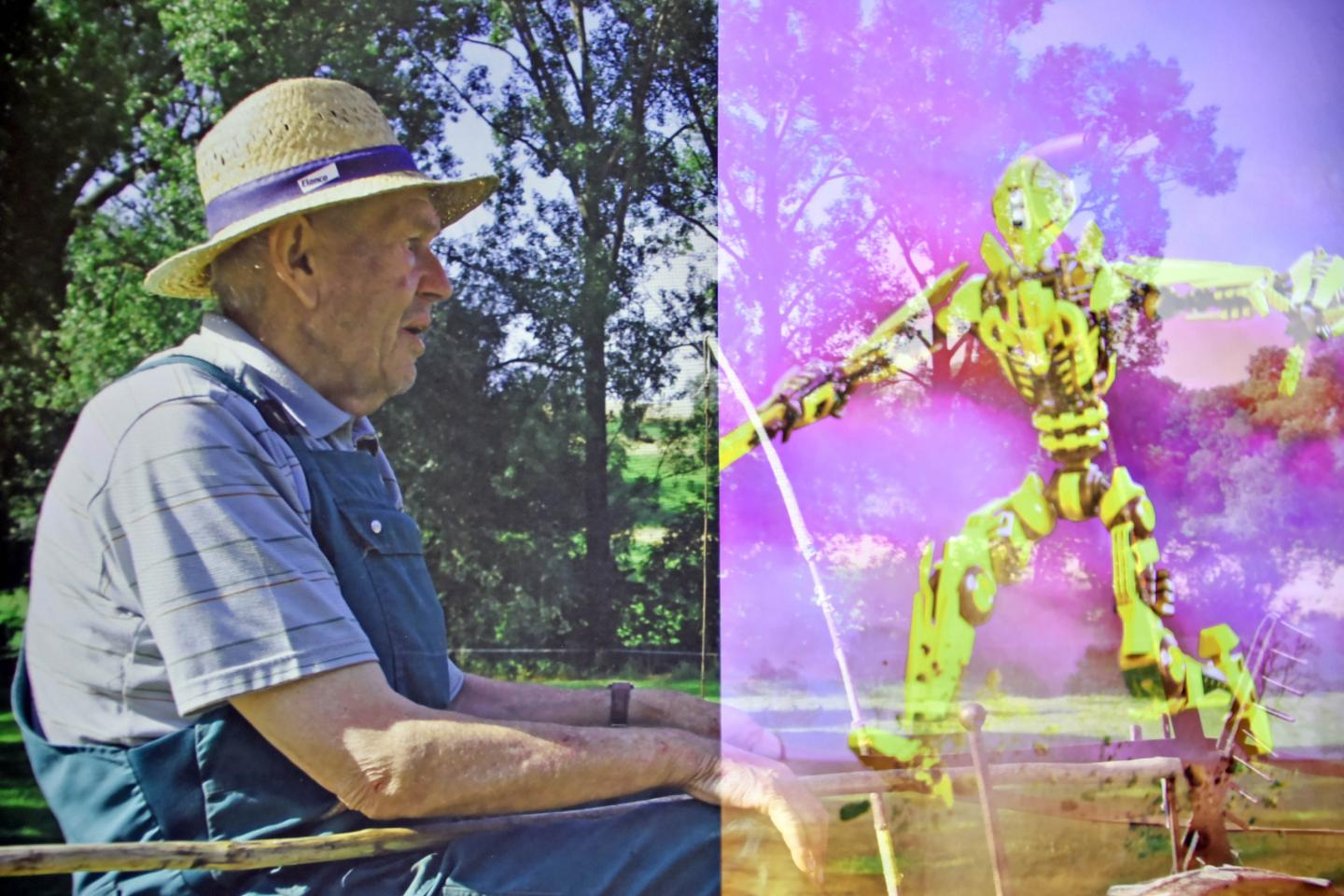 Elderly People and Robots