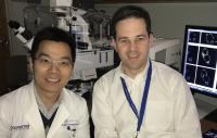 Drs. Westover and Zhou, UT Southwestern Medical Center