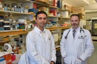 Dr. Saman Maleki and Dr. John Lenehan