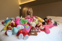 Vicky Nina among her toys