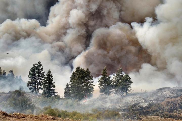 USDA-smoke