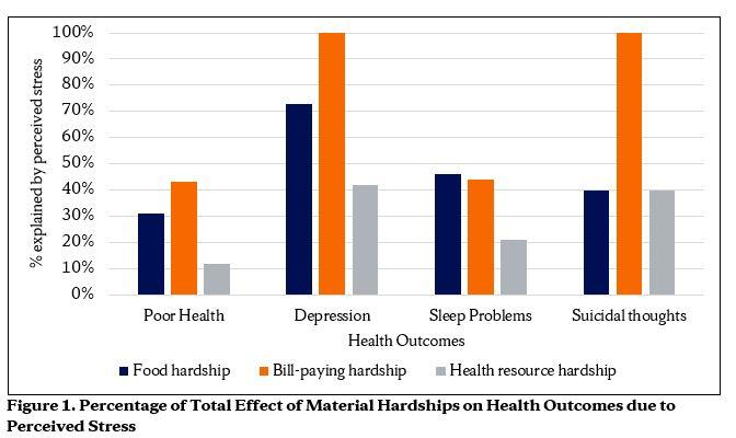 Impact of Material Hardships on Young Adults