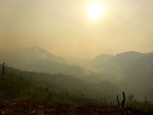 Smog from agricultural and forest fires