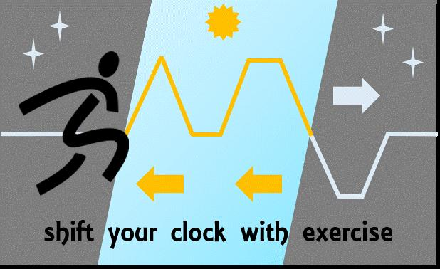 Shift Your Body Clock with Exercise