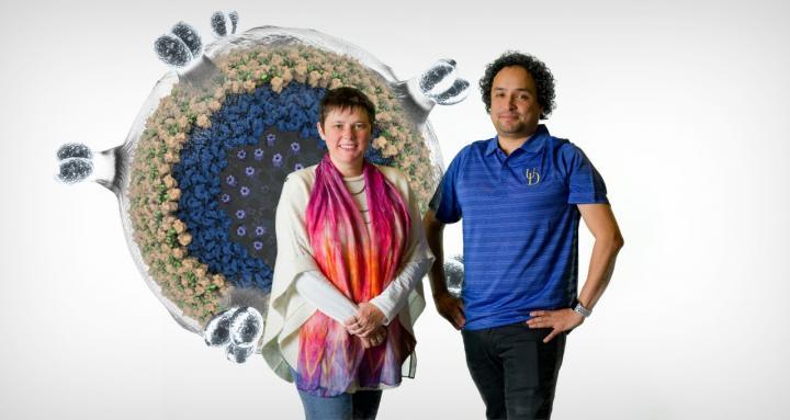 Tatyana Polenova and Juan Perilla, University of Delaware