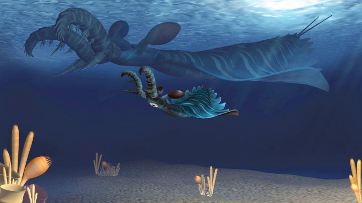 Young Radiodontan Arthropods Could Be Voracious Predators Too
