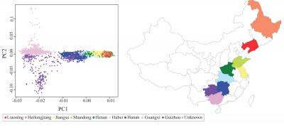 Genetic Variants Linked to Type 2 Diabetes Identified in Chinese Populations
