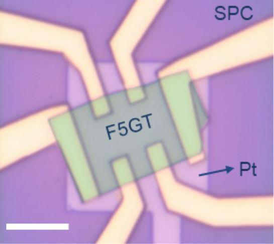 SP-FET transistor