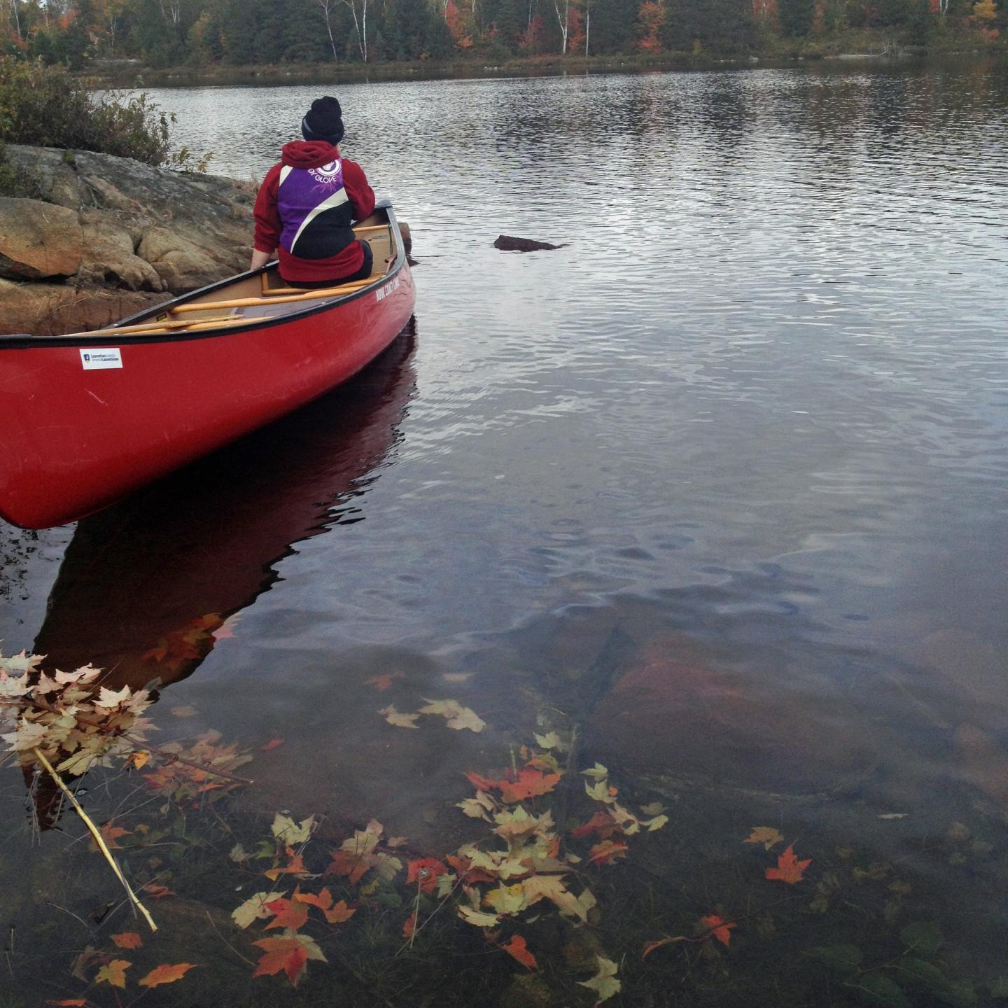 Leaves Accumulated in Lake with Canoe