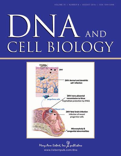 <em>DNA and Cell Biology</em>