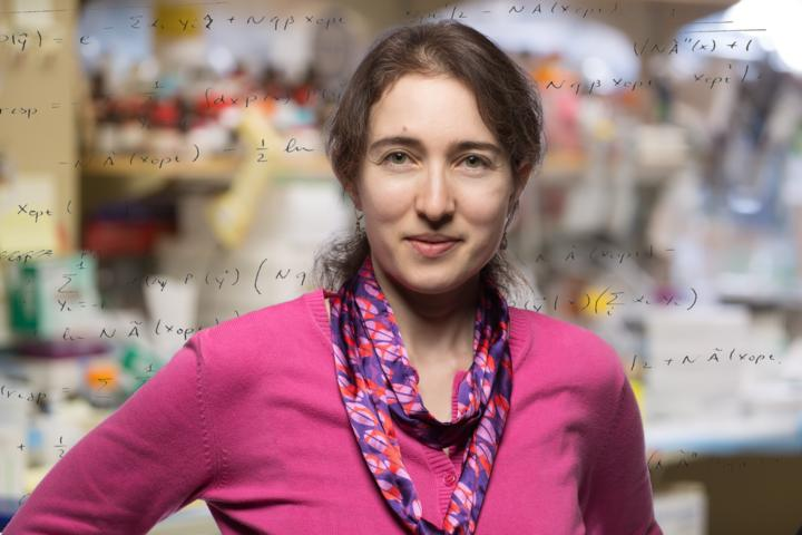 Tatyana Sharpee, Salk Institute