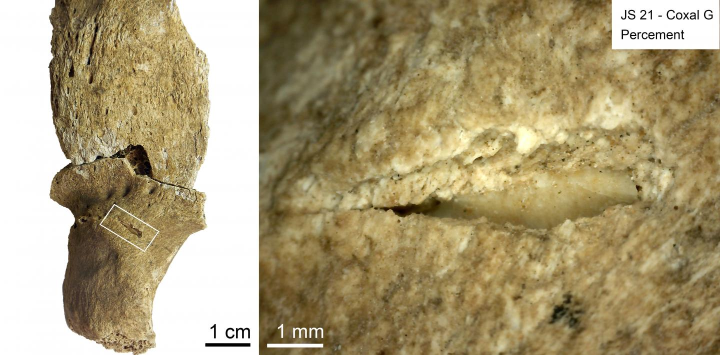 Projectile impact puncture with an embedded lithic fragment