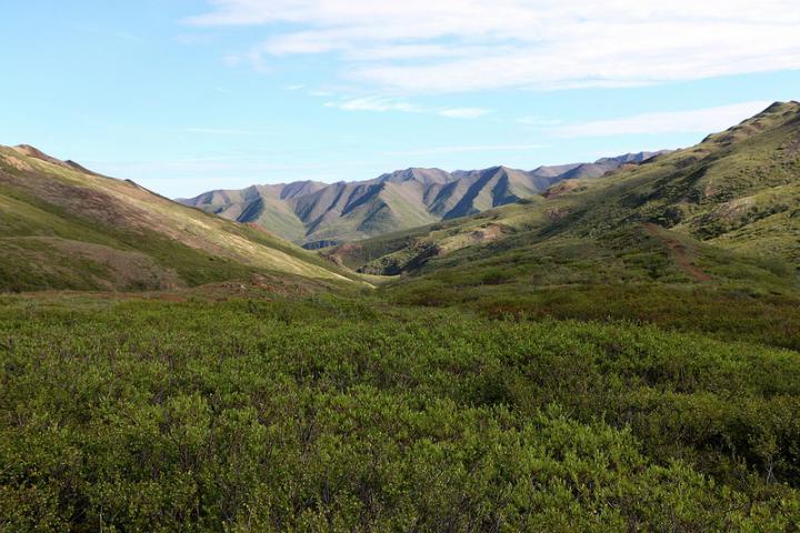 Dartmouth Arctic Carbon Soils Study