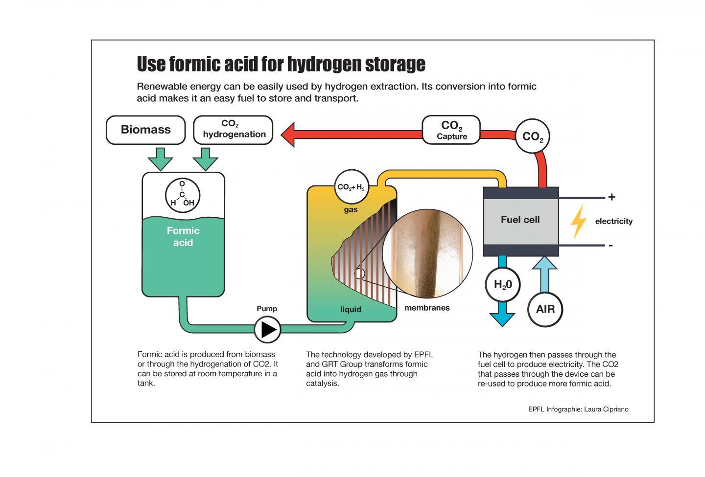 Infographic of Formic Acid Storage