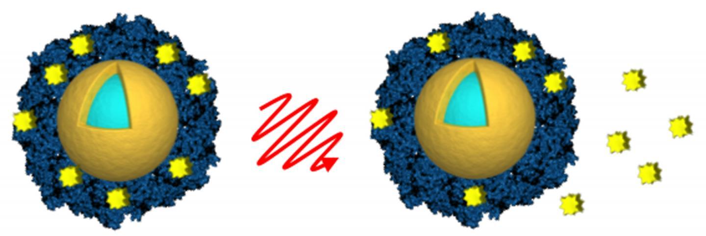 Light-activated Nanoshells