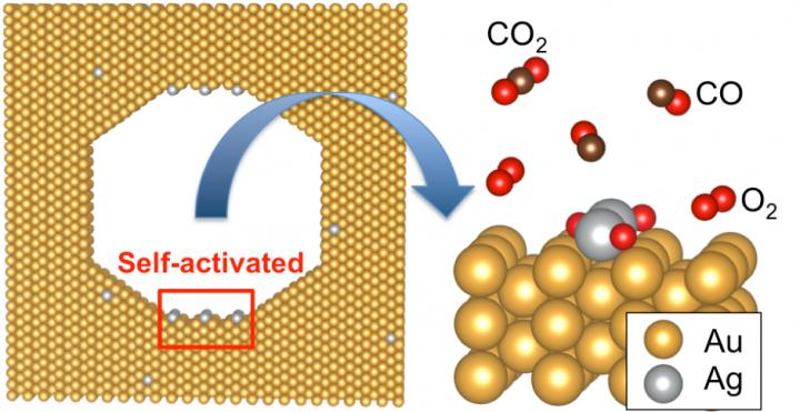 An Active Structure in a Nanoporous Gold Catalyst