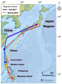 Migration Route Map