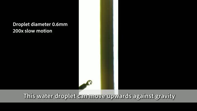 Moving Droplet at Record High Speed CityU 2019