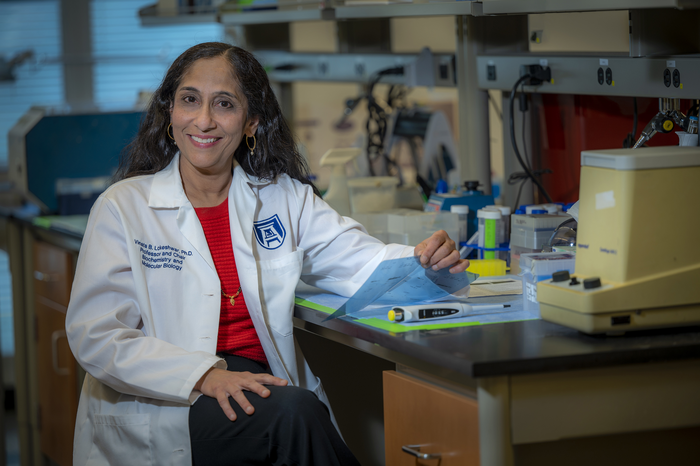 Lokeshwar honored for excellence in urologic research