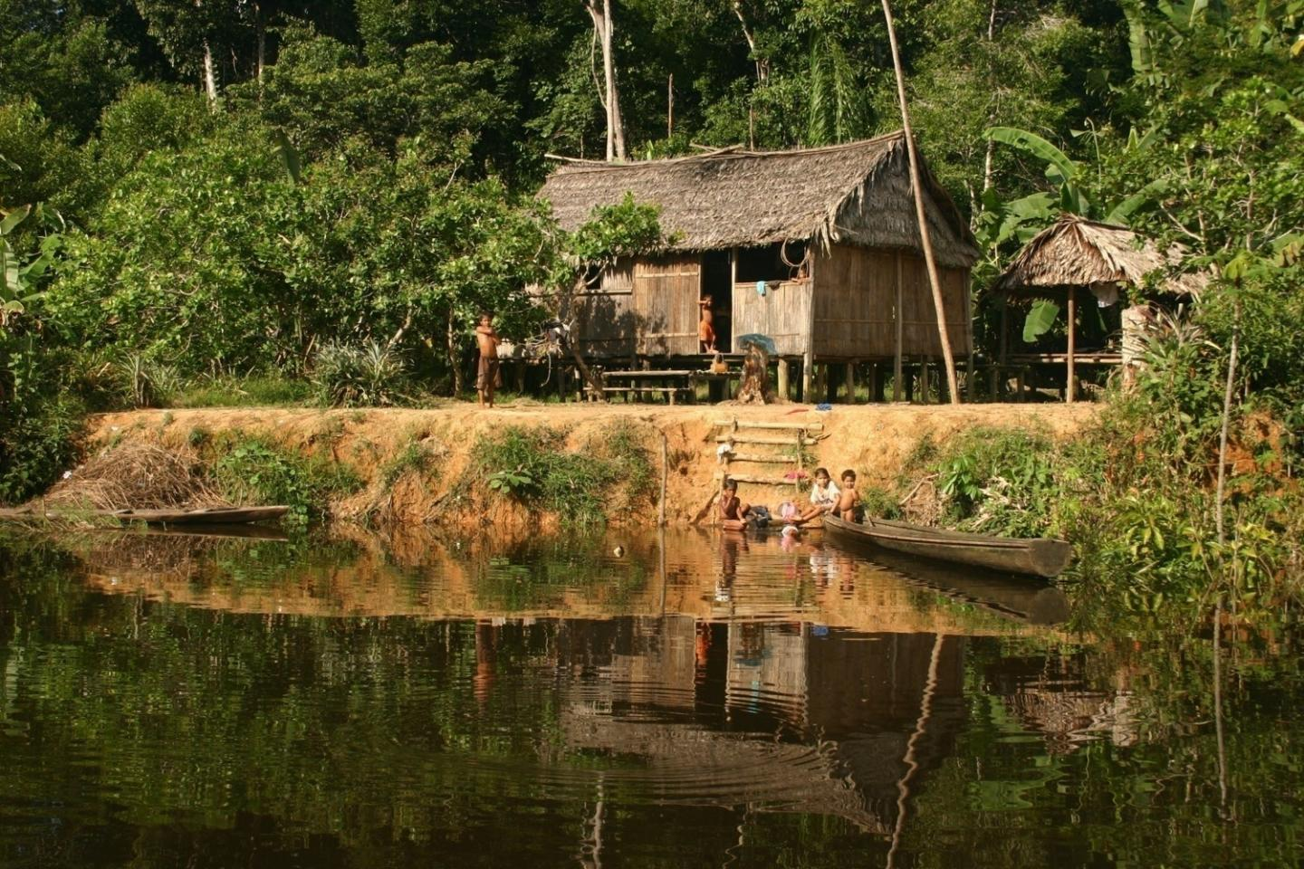 Forest-Proximate People in Amazonia State, Brazil