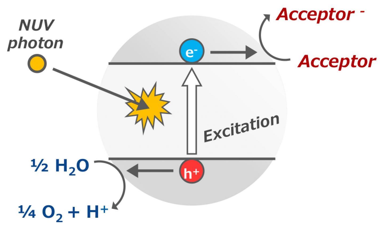 Photocatalytic Reaction of Titanium Oxide