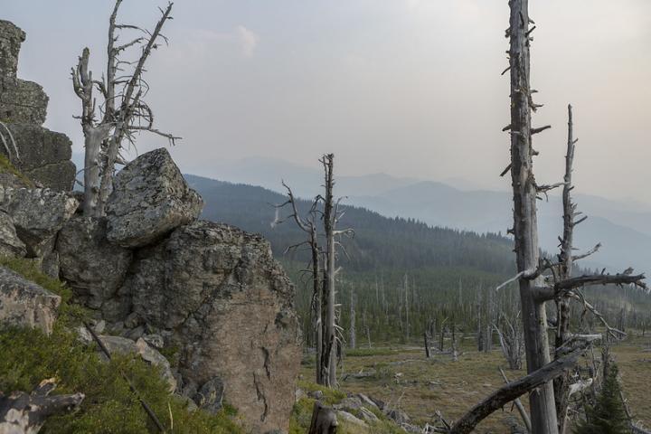 Washington wildfire smoke