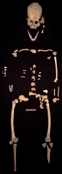 Prehistoric Skeleton