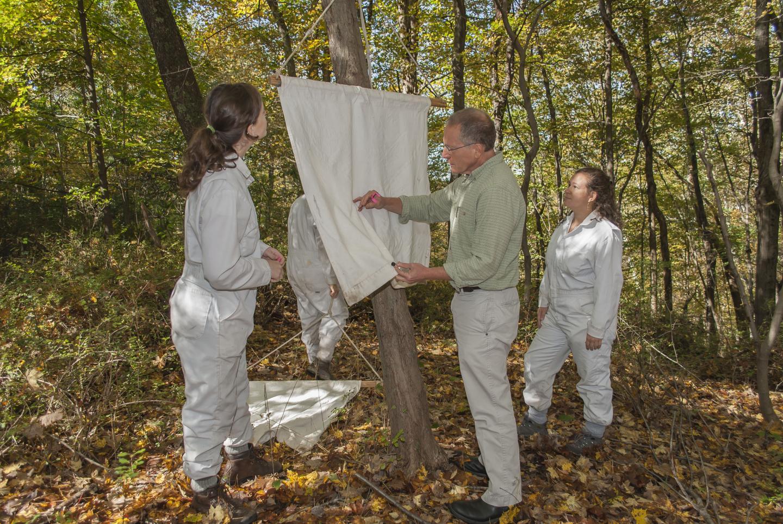 Surveying for Blacklegged Ticks