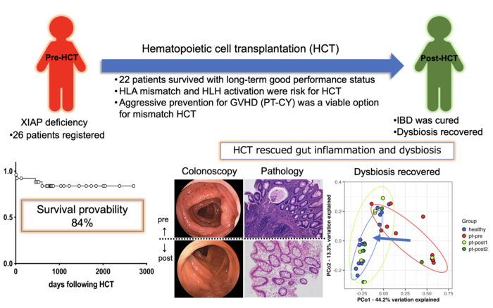 Hematopoietic cell transplantation rescues gut inflammation and dysbiosisi in patients with XIAP deficiency